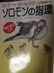 ソロモンの指輪 コンラート・ローレンツ 動物行動学